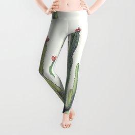 Cactus field Leggings