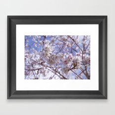 Blossom, Bloomin Blossom.  Framed Art Print