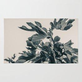Fig Leaf Tree #society6 #decor #buyart #kirovair Rug