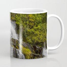 Cascada Del Toro Coffee Mug