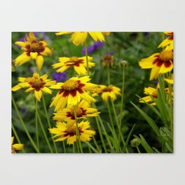 Summer Perfection Canvas Print