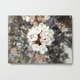 The Beauty of Neutral  Metal Print
