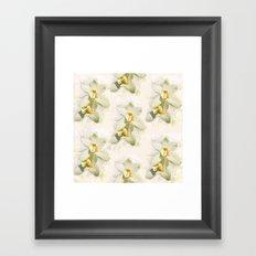 White Orchids Framed Art Print