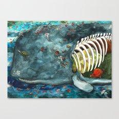 Whale - Head Canvas Print
