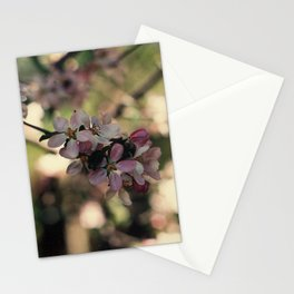 blossum Stationery Cards