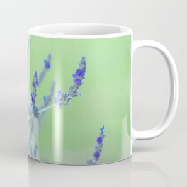Close up of Lavender Flowers Coffee Mug