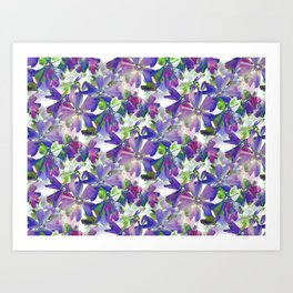 Phlox Beauty Art Print