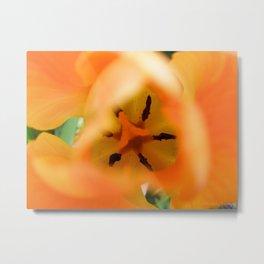 Orange Tulip Heart by Mandy Ramsey Metal Print
