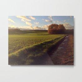 Green Field Metal Print