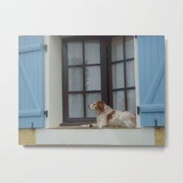 Pensive dog  Metal Print