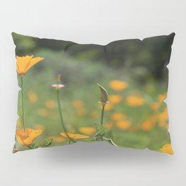 California Poppy Field Pillow Sham