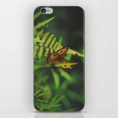 Butterfly, Bali iPhone & iPod Skin