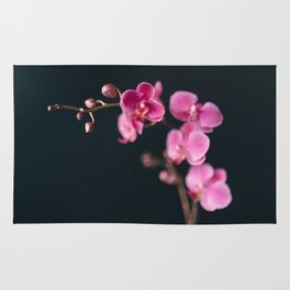 Orchid Song Rug
