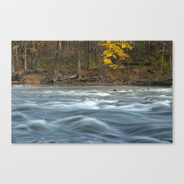 Autumn colors and water flowing on the Thornapple River Canvas Print
