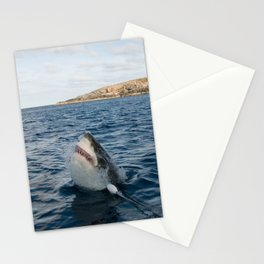 Great White Shark Carcharadon carcharias Stationery Cards