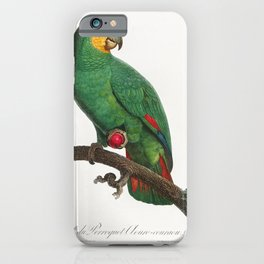 Military Macaw Ara militaris from Natural History of Parrots (1801-1805) by Francois Levaillant iPhone Case