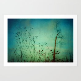 Between Autumn and Winter Art Print