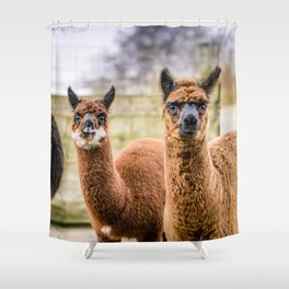 Cheeky Alpacas Shower Curtain