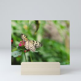 Butterfly joy Mini Art Print
