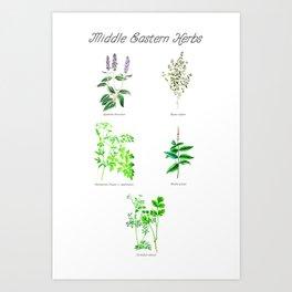 Middle Eastern Herbs Art Print