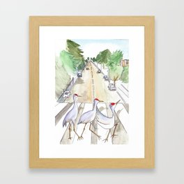 Abbey Cranes Framed Art Print