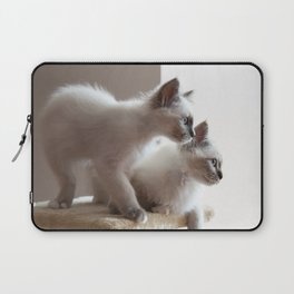 Portrait of two white long hair birman cats with blue eyes. Laptop Sleeve