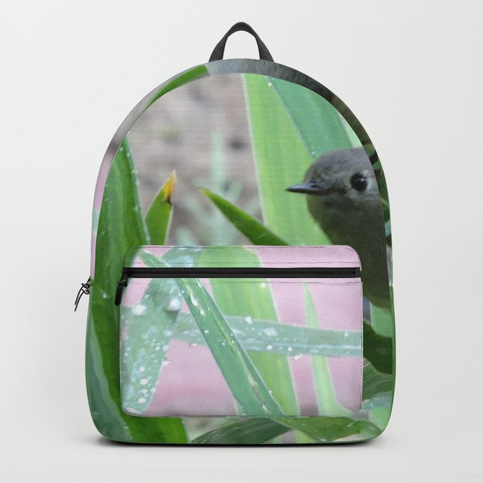 Kinglet Approaching Backpack