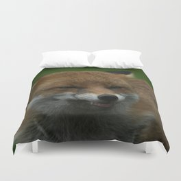 Wild Red Fox Showing Its Teeth Duvet Cover