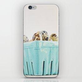 Mi cesta turquesa. iPhone Skin