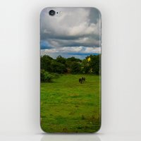 farm iPhone & iPod Skins featuring Farm by Ashley Hirst Photography