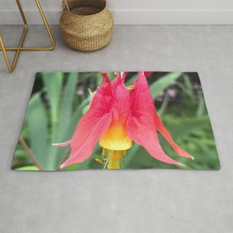 490 - Rose and Yellow Columbine Rug