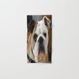 American Bulldog Hand & Bath Towel