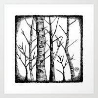 Birch Tree - Black & White Art Print