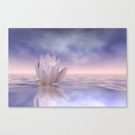 the lonely water lily Canvas Print