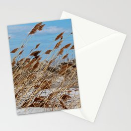 Tame a Wild Wind- horizontal Stationery Cards