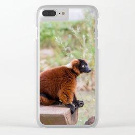 Contemplative Clear iPhone Case