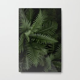 Tropical leaves 02 Metal Print