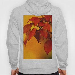 VIVID AUTUMNAL LEAVES Hoody