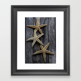 Starfishes in wooden Framed Art Print