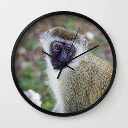cute monkey Wall Clock