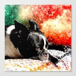 Boston Terrier (Jake) Canvas Print