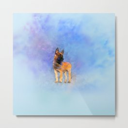 Belgian Malinois Puppy Painting - Mechelaar Metal Print