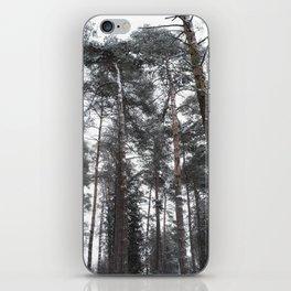 Hidden Forest in Winter iPhone Skin