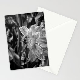 bee profile - black and white Stationery Cards