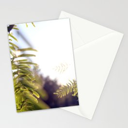 Leaves & Light Stationery Cards