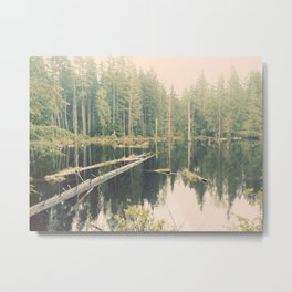 Mystical Pond Forest Redmond Washington, Original Fine Art Photography Architecture Home Decor Gift Metal Print