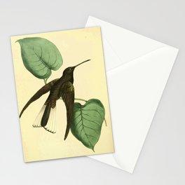 Plate 82- Trochilus niger, Black Humming Bird17 Stationery Cards