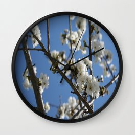 Cherry Blossom Branches Against Blue Sky Wall Clock