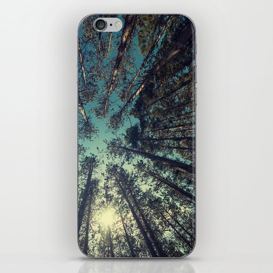Pine Grove iPhone & iPod Skin
