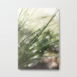Dew on Grass : Joy Comes in the Morning Metal Print
